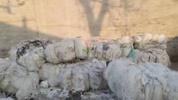 廊坊市广阳区附近长期大量回收化工废料